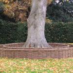 Cane End Tree Circle 2007