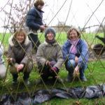 Higher Barn Living Willow 2008