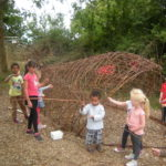 Willow Whale 2014